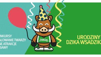 Photo of Dzik Wsadzik będzie świętował urodziny razem z kibicami!