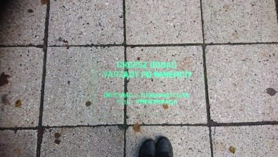 Photo of Zielonogórski deptak w transplantologicznych hasłach