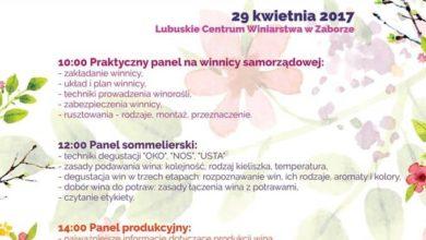 Photo of Winiarska Wiosna, czyli warsztaty dla wszystkich na smak i wiedzę