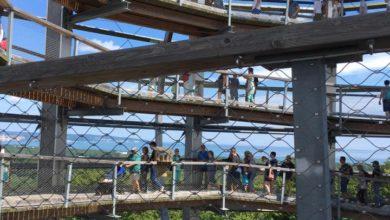 Photo of Wieża widokowa w Rugii – imponujący widok i mnóstwo turystów [ZDJĘCIA]