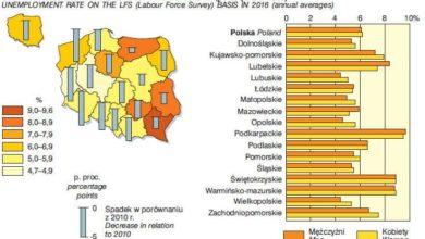 Photo of Jak się żyje Lubuszanom? Ekonomia i gospodarka pod lupą GUS