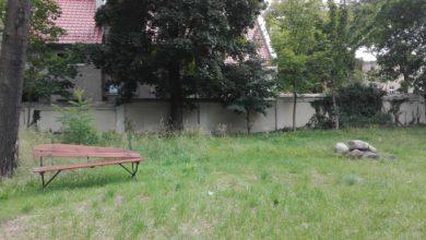 Photo of Gdzie potrzeba ławek w mieście?