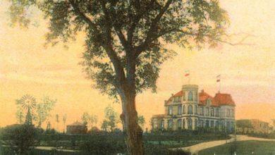 Photo of Dawna Zielona Góra zachowana… na pocztówce. Ekspozycja w Centrum Przyrodniczym