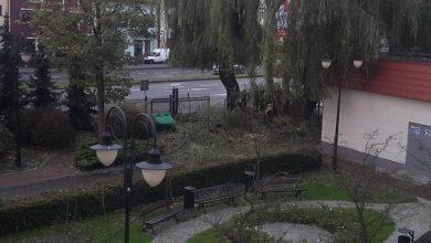 Photo of Obliczono straty po Ksawerym. Pokryje je samorząd
