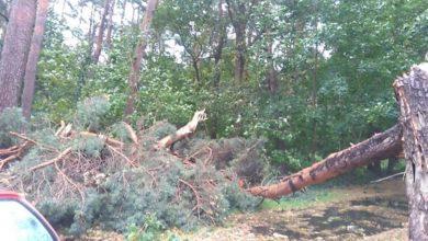 Photo of Skutki orkanu: w Zielonej Górze nadal brak prądu, nie działa ujęcie wody w Obrzycy