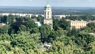 Photo of Najbardziej zalesione miasto w Polsce! [MAPY]