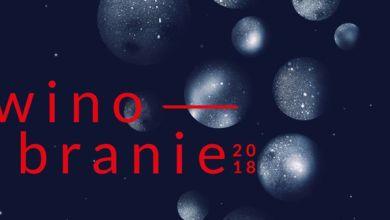 Photo of Kosmos, a może bąbelki? Oto najlepszy winobraniowy plakat roku!