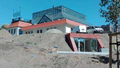 Photo of Wzgórza Winne gotowe do Winobrania? Zobacz, jak wygląda Palmiarnia