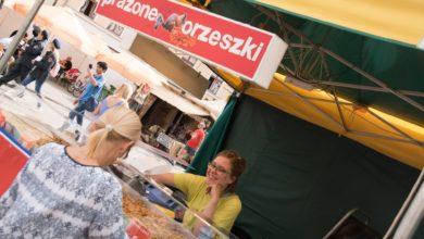 Photo of Winobranie w niedzielę bez koncertów, ale nie bez atrakcji [PROGRAM]