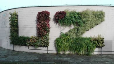 Photo of Aula UZ wygląda kwitnąco! Roślinny napis na Podgórnej