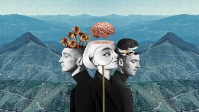 "Photo of Clean Bandit – ""What Is Love?"" [PŁYTA TYGODNIA]"