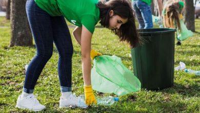 Photo of Krok w stronę czystej Zielonej Góry – sąsiedzkie sprzątanie koło Trasy Północnej