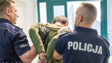 Photo of Policyjne podsumowanie Pol'and'Rocka: ponad 130 przestępstw, tyle samo wykroczeń