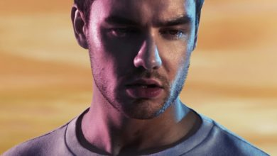 Photo of Liam Payne feat. A Boogie Wit da Hoodie – Stack It Up