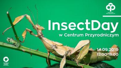 Photo of Święto owadów w Centrum Przyrodniczym. InsectDay już w tę sobotę!