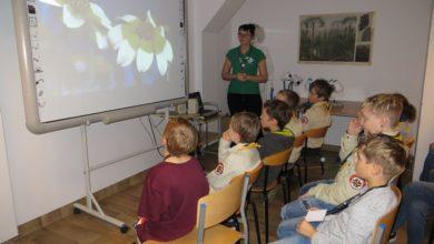 Photo of Jeśli zoo, to w Cottbus, a ogród botaniczny – w Zielonej Górze. Polacy i Niemcy wspólnie poznają przyrodę