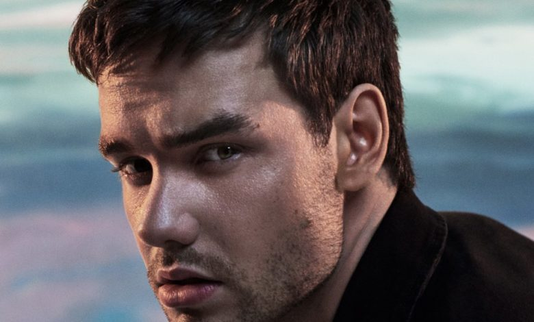 Photo of Liam Payne – Live Forever ft. Cheat Codes
