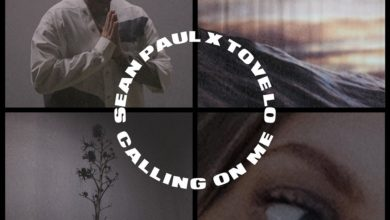 Photo of Sean Paul X Tove Lo – Calling On Me