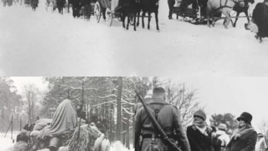 Photo of Ciąg dalszy wspomnień Ernsta Tulke z Nowego Kisielina [Nieznana Zielona Góra]