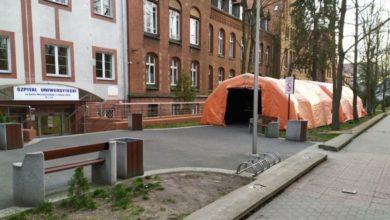 Photo of Koronawirus w Lubuskiem: 7 nowych zakażeń w ciągu doby