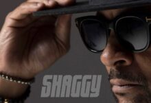 "Photo of Shaggy – ""Hot Shot 2020"" [PŁYTA TYGODNIA]"