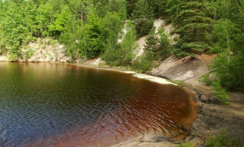Photo of Parki krajobrazowe czekają na odkrycie! Zobacz siedliska motyli, jeziora i lasy