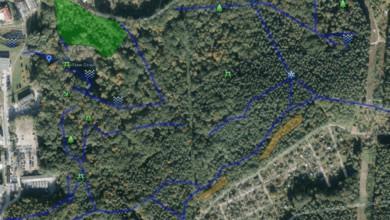 Photo of Rewitalizacja terenów zielonych. Czas na Park Poetów?