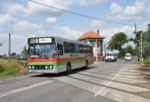 Photo of Autobusem PKS teraz również nad jezioro. O której dotrzemy do Dąbia?