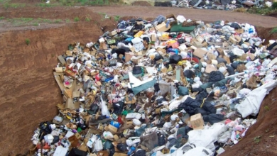 Photo of ZGK apeluje, abyśmy wyrzucali mniej odpadów. Jak to zrobić?