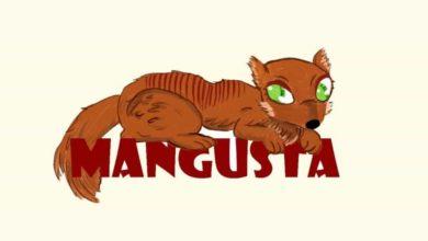 Photo of Mangusta na Pyrkonie – podsumowanie konwentu